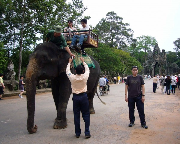 have elephant ride too...